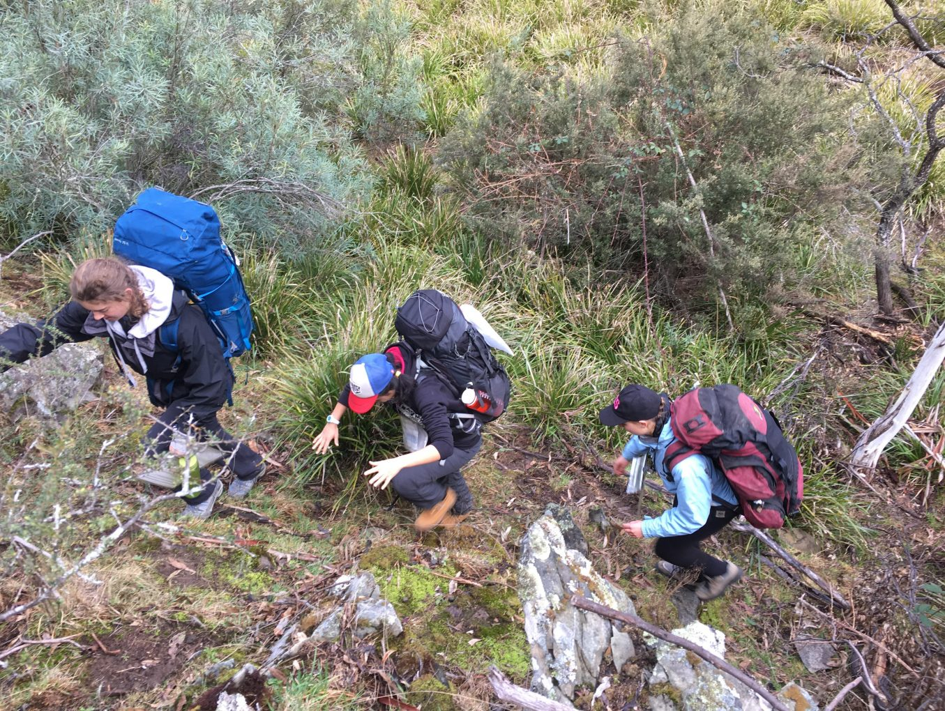 PITTWATER Silver Hike Qual Oct 14-16